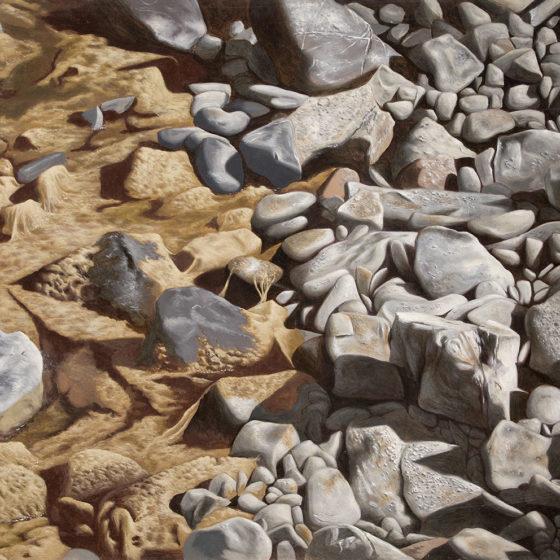 Pietre di fiume 2 olio su tela, cm 80×120